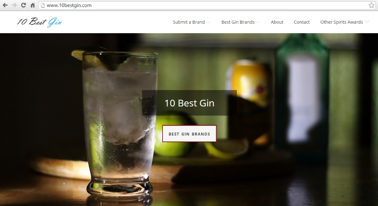 Alcohol Awards: 10 Best Gin